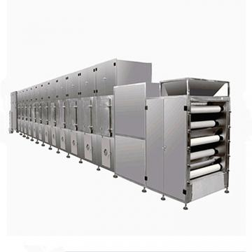 China Mesh Belt Conveyor Dryer Vegetable Carrot Drying Machine