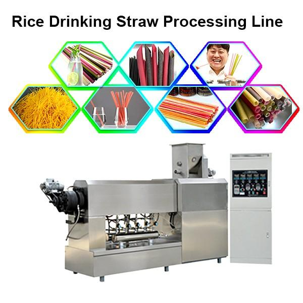 Stainless Steel Disposable Degradable Eco-Friendly Plastic-Free Rice Tapioca Corn Starch Drinking Straw Manufacturer Machine #1 image