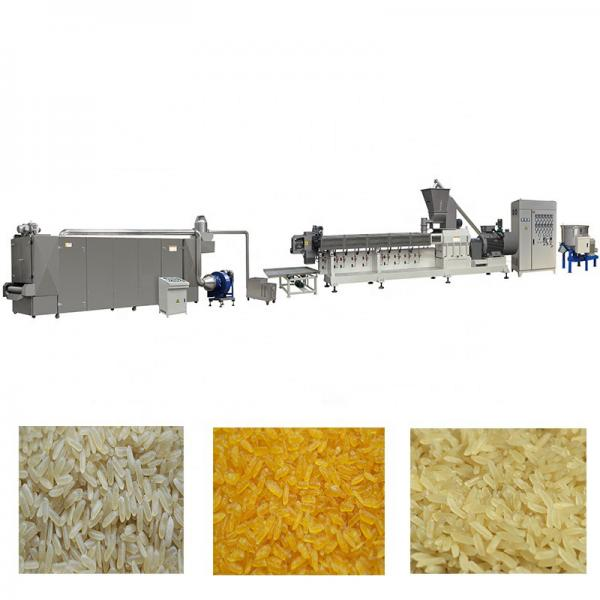 High Capacity Artificial Rice Nutritional Rice Making Machine Industrial Price #1 image
